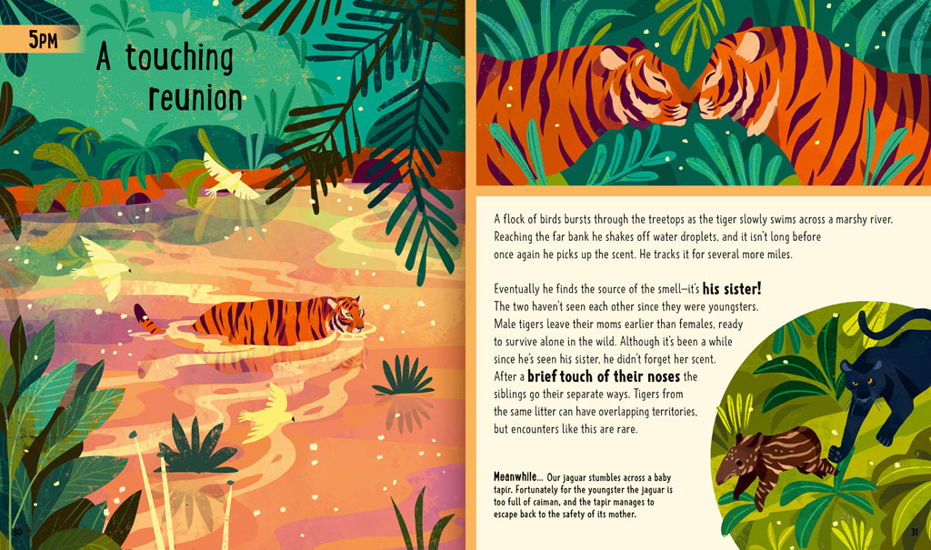 Book pages about a tiger meeting his sister