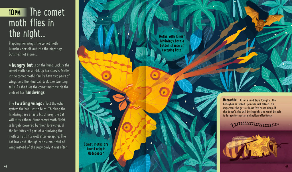Book pages about a comet moth at night